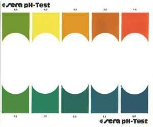 Kiểm Tra Độ PH - PH TEST SERA-2