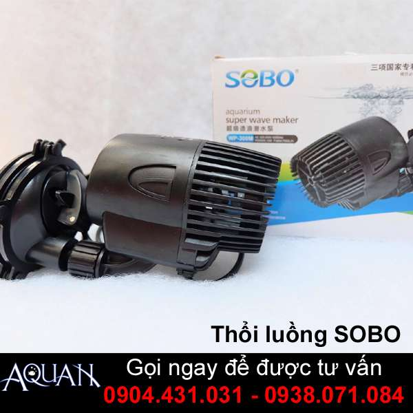 Thổi Luồng 6W Sobo WP-100M
