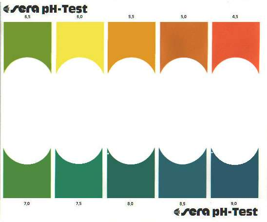 Bảng so sánh kết quả đo PH