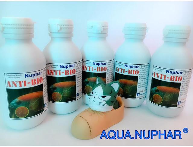 ANTI-BIO-NUPHAR – Thuốc trị nấm cho cá, trị túm lắc cho guppy